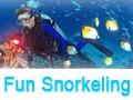 Fun snorkeling - Randonnée palmée