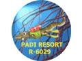 Geko Dive Bali - Centre de plongée Bali Indonésie