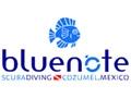 Blue Note - Centre de plongée Cozumel Mexique